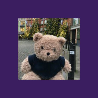 Winston the Realise Bear